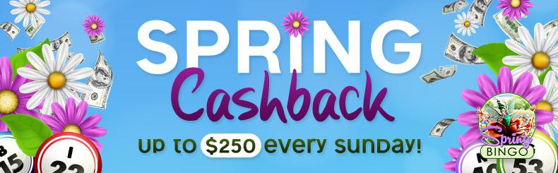 Spring Cashback