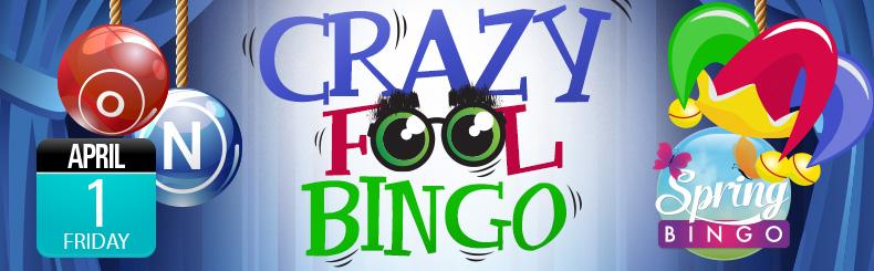 Crazy Fool Bingo